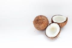 Rijpe kokosnoten en halve kokosnoot op witte achtergrond Royalty-vrije Stock Fotografie