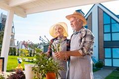 Rijpe man en vrouw die gestreepte schorten dragen die bloemen en installaties behandelen royalty-vrije stock foto