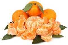 Rijpe mandarijnen Royalty-vrije Stock Afbeeldingen