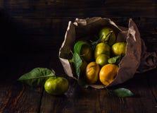 Rijpe mandarijnen met bladeren royalty-vrije stock afbeelding