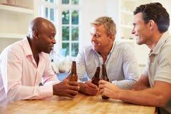 Rijpe Mannelijke Vrienden Sit At Table Drinking Beer en het Spreken stock afbeelding
