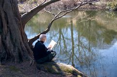 Rijpe mensenlezing in openlucht royalty-vrije stock fotografie