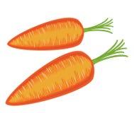 Rijpe mooie rode groente Sappige smakelijke wortelen, een bron van nuttige vitaminen Kleurenbeeld Vector illustratie vector illustratie