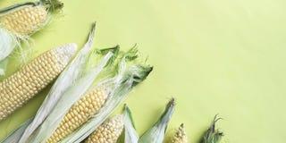 Rijpe natuurlijke maïskolven Het gezonde Eten Milieuvriendelijke producten Zonnebloemzaden - zaadfonds royalty-vrije stock foto's