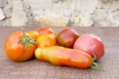 Rijpe natuurlijke tomaten van verschillende verscheidenhedenlijst Stock Afbeeldingen