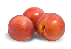 Rijpe nectarines royalty-vrije stock foto's