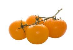 Rijpe oranje tomaten Royalty-vrije Stock Afbeeldingen