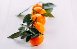 Rijpe oranje verse mandarin op een witte achtergrond Vijf mandarijnen met groen op een witte achtergrond royalty-vrije stock fotografie
