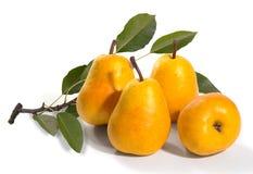 Rijpe rijpe peren op een witte achtergrond stock afbeeldingen