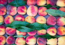 Rijpe perziken binnen op de markt Royalty-vrije Stock Fotografie
