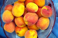 Rijpe perziken in een kom Stock Afbeelding