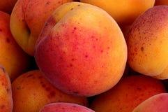Rijpe perziken in een kom Stock Foto