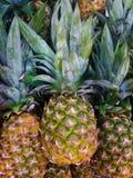 Rijpe prettty ananas bovenop een stapel van ananassen in een markt stock fotografie
