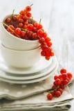 Rijpe rode aalbessen Royalty-vrije Stock Afbeelding