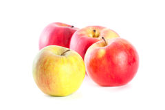 Rijpe rode appelen Stock Afbeelding