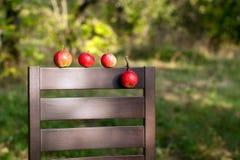 Rijpe rode appelen op de rug van stoel Royalty-vrije Stock Foto's