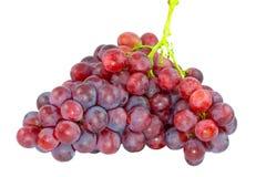 Rijpe rode druiven met geïsoleerde bladeren Stock Fotografie