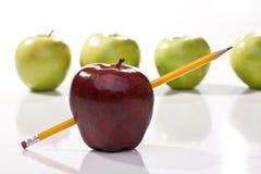 Rijpe rode en groene appelen Stock Afbeeldingen