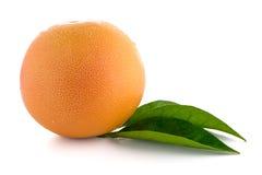 Rijpe rode grapefruit stock afbeelding