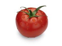 Rijpe, rode tomaat. Royalty-vrije Stock Afbeeldingen