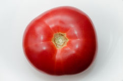 Rijpe rode tomaat Royalty-vrije Stock Foto's