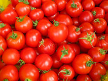Rijpe rode tomaten Stock Afbeelding