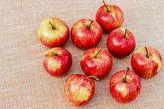 Rijpe rood-gele appelen die op een lichte achtergrond liggen Royalty-vrije Stock Fotografie
