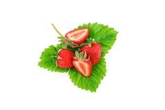 Rijpe sappige aardbeien op een witte achtergrond Royalty-vrije Stock Afbeelding