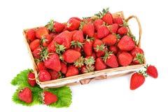 Rijpe sappige aardbeien op een witte achtergrond Stock Afbeeldingen