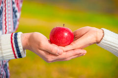 Rijpe sappige appel in de handen van een houdend van paar royalty-vrije stock foto's