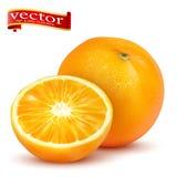 Rijpe sappige zoete gehele sinaasappel en plak vector realistische 3d illustratie van hoog detail vector illustratie