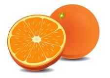Rijpe sinaasappel Vector Illustratie