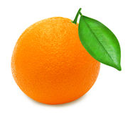Rijpe sinaasappel op een witte geïsoleerde achtergrond Royalty-vrije Stock Fotografie