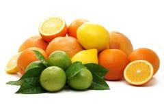 Rijpe sinaasappelen, groene kalk en gele citroen. Royalty-vrije Stock Afbeeldingen
