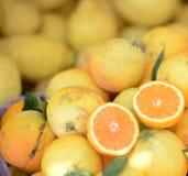 Rijpe sinaasappelen voor verkoop royalty-vrije stock foto's