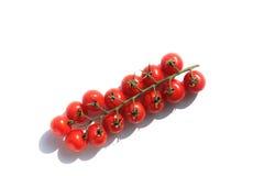 Rijpe tomaat stock foto's