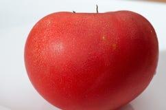 Rijpe tomaat met dalingen van water Stock Afbeelding