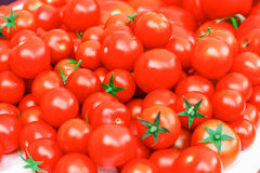 Rijpe Tomaten Stock Foto