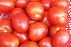 Rijpe tomaten in mand Stock Afbeelding