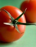 Rijpe tomaten op groene achtergrond Royalty-vrije Stock Foto's
