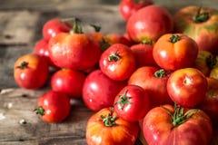 Rijpe tomaten op houten achtergrond Royalty-vrije Stock Foto