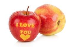 Rijpe twee appelen met stammen Stock Fotografie