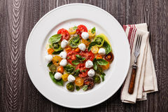 Rijpe verse kleurrijke tomatensalade met mozarella Stock Foto
