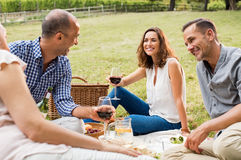 Rijpe vrienden die van picknick genieten Royalty-vrije Stock Foto's