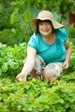 Rijpe vrouw in aardbeiinstallatie Stock Foto