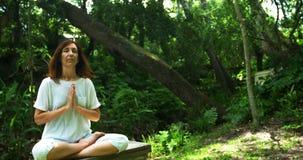 Rijpe vrouw die yoga in het park 4k uitvoeren stock footage