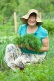 Rijpe vrouw met geoogste dille Royalty-vrije Stock Foto's