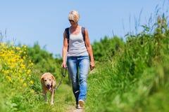 Rijpe vrouw met hond nemen die in het land wandelen royalty-vrije stock fotografie