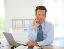 Rijpe zakenman die aan laptop werkt stock afbeeldingen