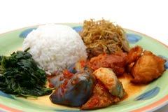 Rijst & groenten Royalty-vrije Stock Foto's